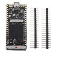 MFMYUANHAN 64Mbit SDRAM Onboard FPGA Downloader Dual Flash RISC一V Development Board Module